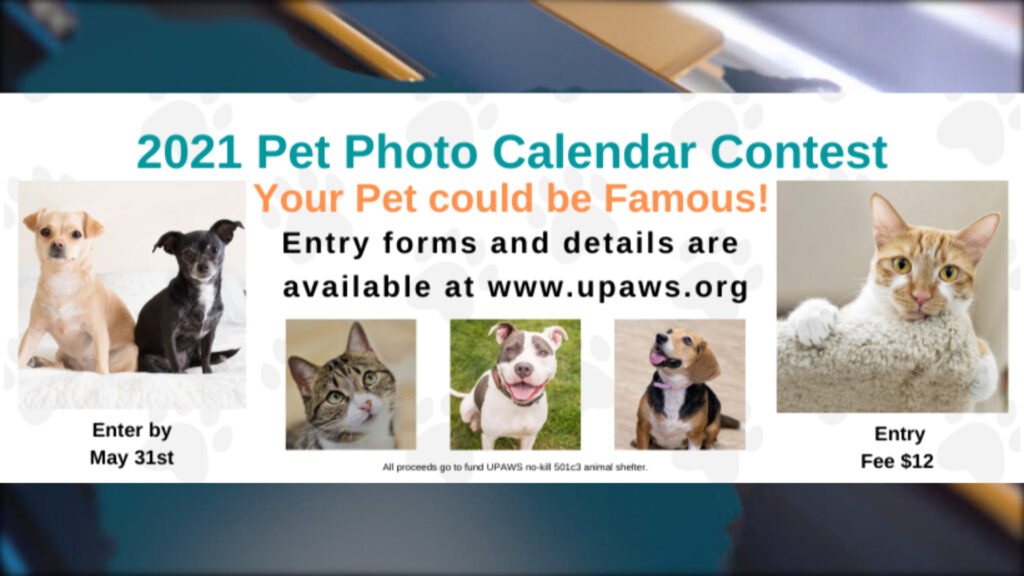 Contest Calendar 2021 UPAWS encouraging submissions for 2021 Pet Photo Calendar Contest